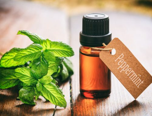 The Effects of Peppermint on Performance