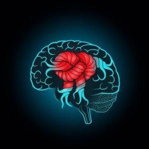 brain in a knot