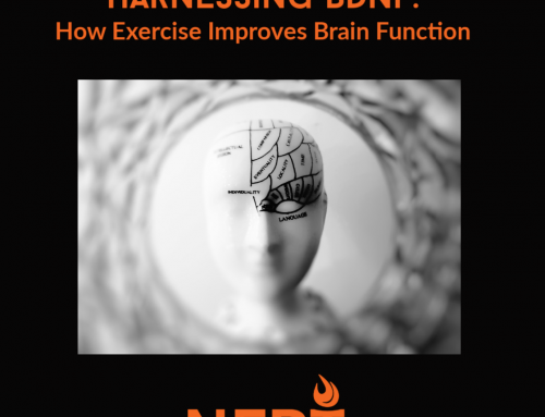 Harnessing BDNF: How Exercise Can Improve Brain Function