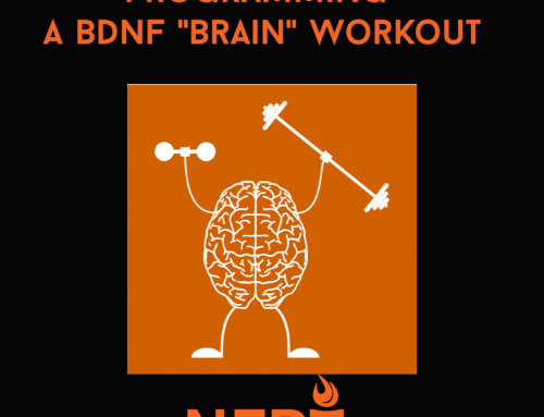 Programming a BDNF-Boosting Workout for Improved Brain Function