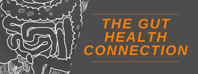 Banner Image Gut Health Connection