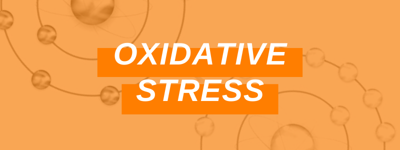 Banner Image Oxidative Stress
