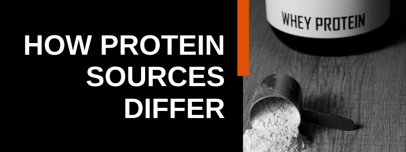 Banner Image Protein Sources