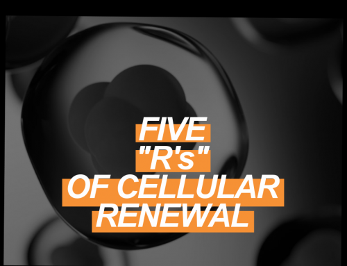 """How to Support Cellular Health: The Five """"R's"""""""