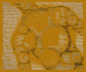 Daily Exercise Timing Word Art 13