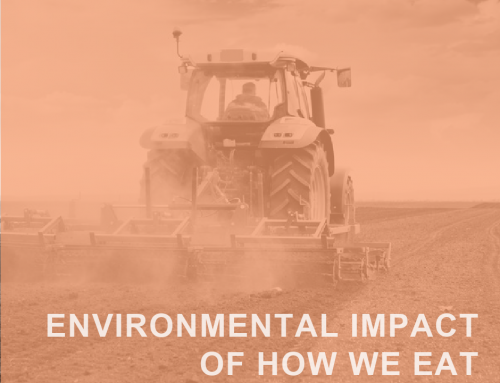 The Way We Eat: Environmental Impact