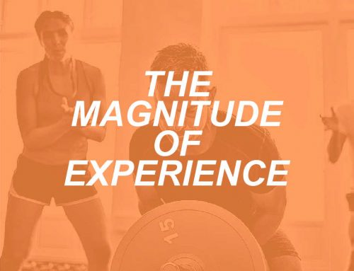 The Magnitude of Experience: What We Can't Learn In Books