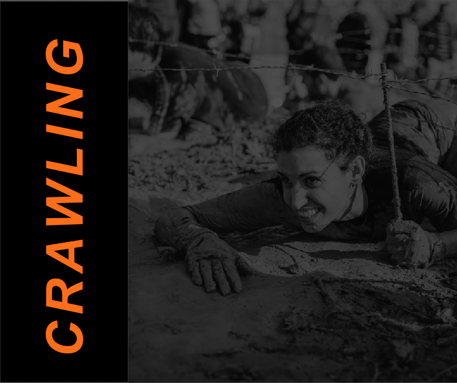 FEATURED Crawling