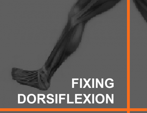 Improve Dorsiflexion By Strengthening This Muscle