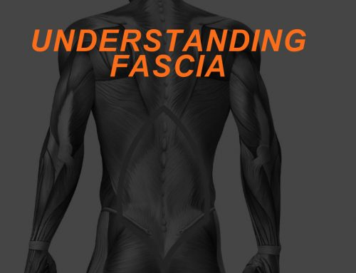Understanding Connective Tissue: Fascia and Programming for Integration