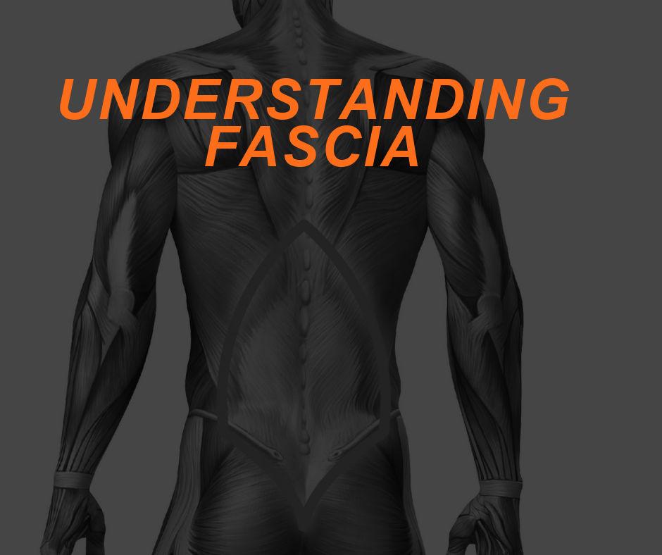 Featured Image FASCIA