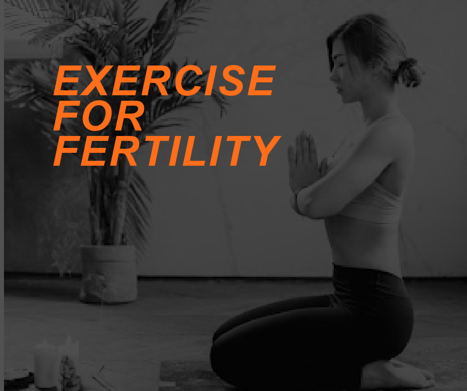 Featured Image FERTILITY