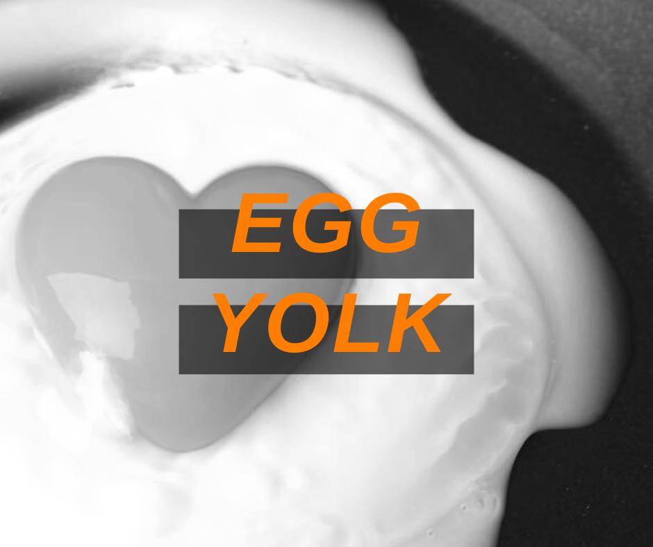 Featured Image Egg Yolk