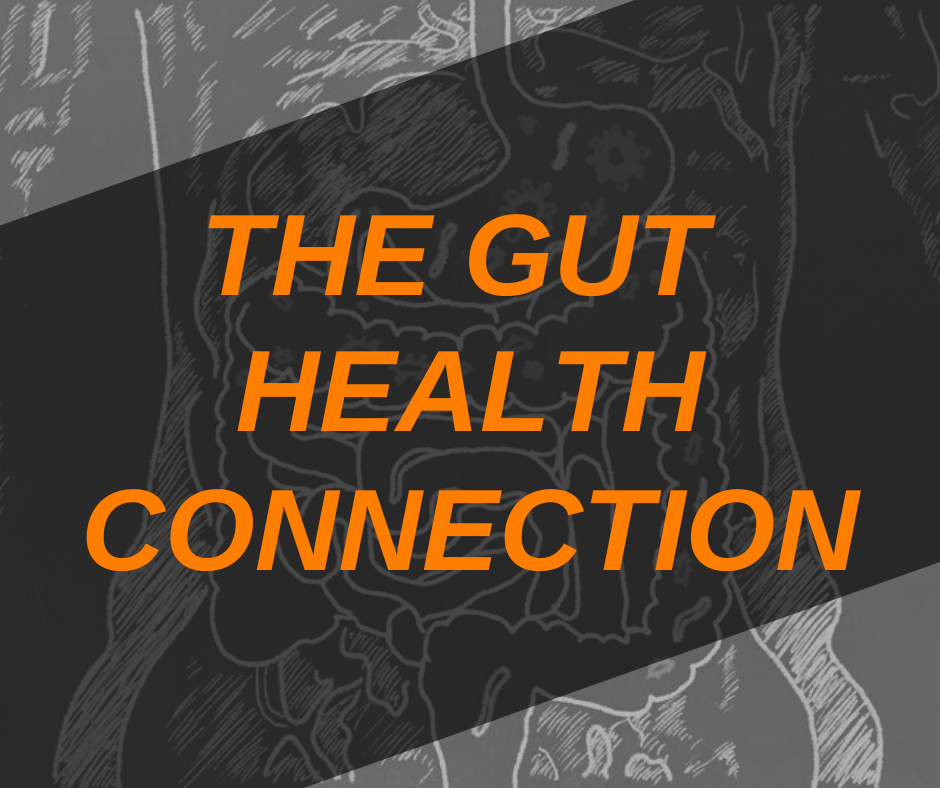 Featured Image Gut Health Connection