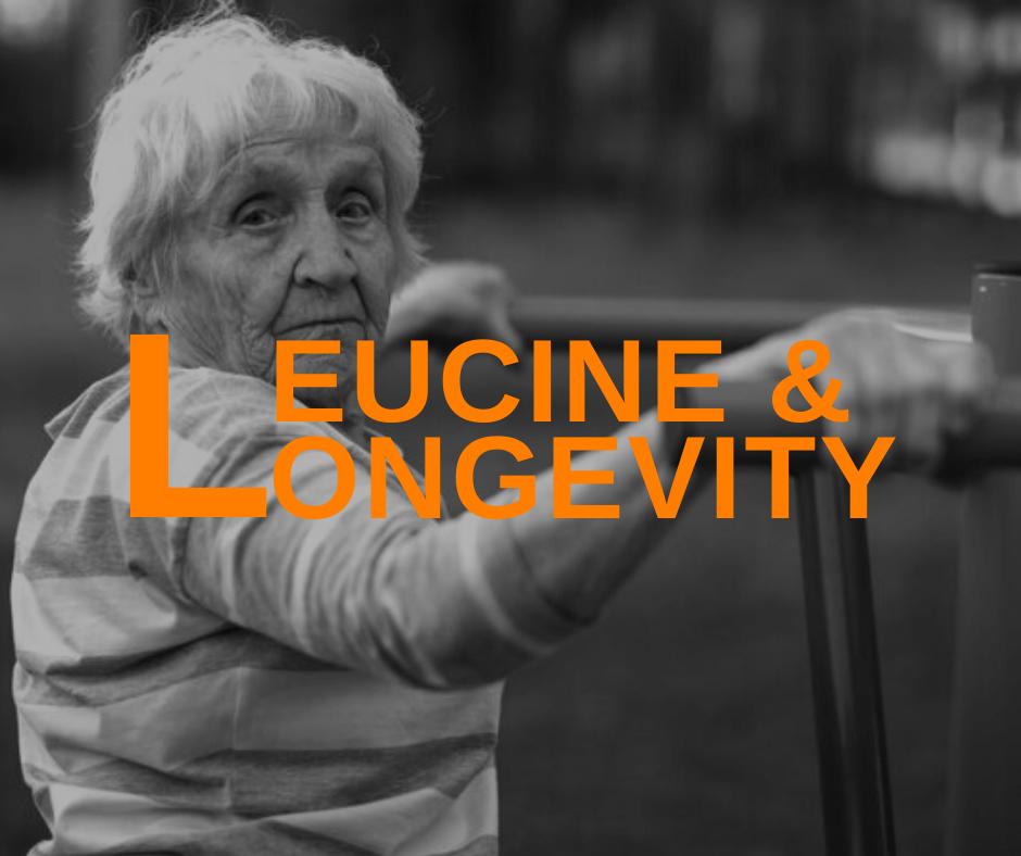 Featured Image Leucine And Longevity