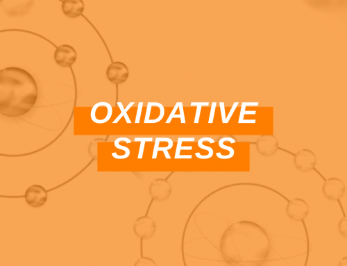 Oxidative Stress: Fighting the Free Radical Damage