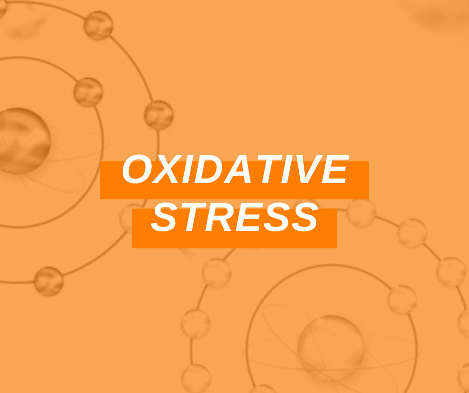 Featured Image Oxidative Stress