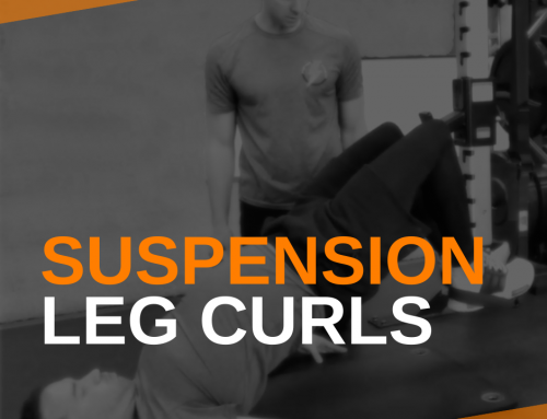 Suspension Leg Curls