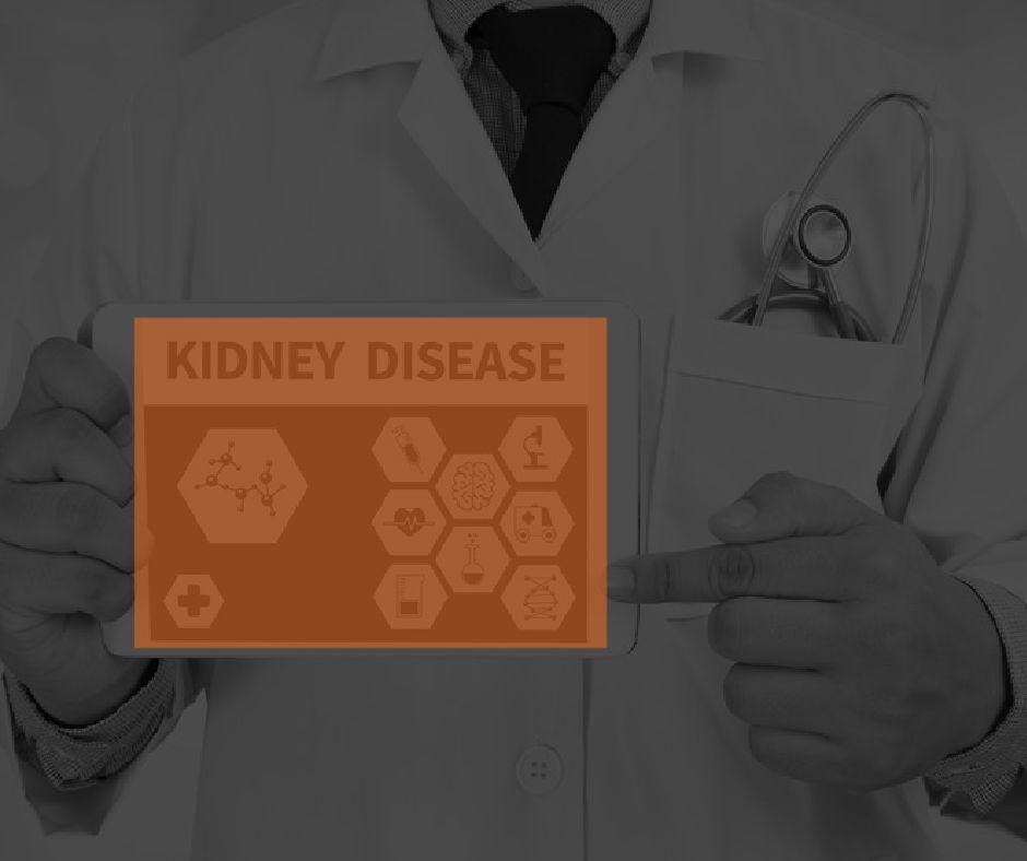 Featured Image Kidney Disease
