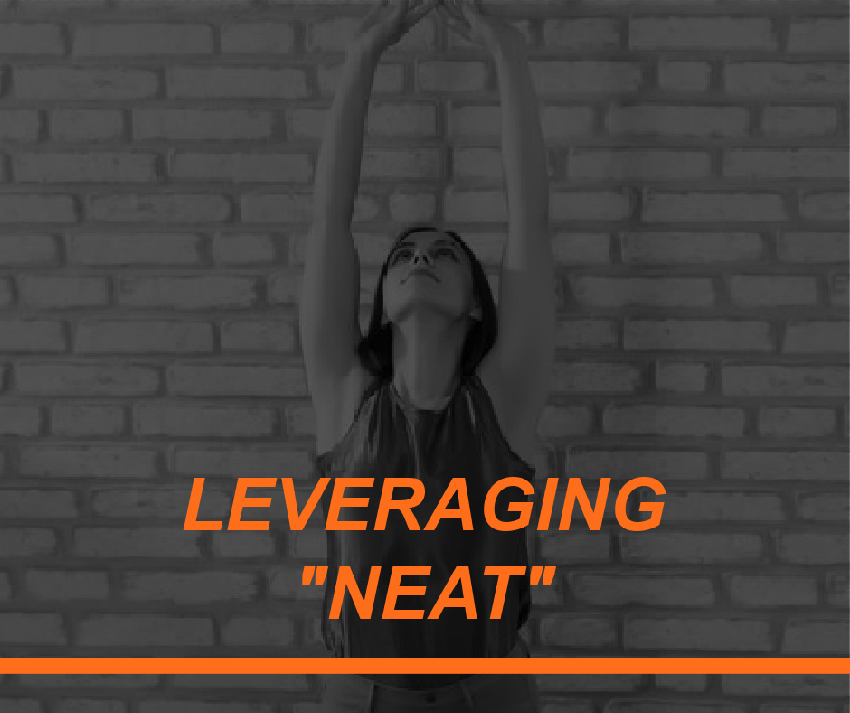 LEVERAGING NEAT