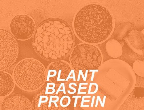 Garden of Eatin' ~ The Perks of Plant-Based Protein