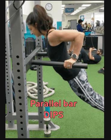 Parallel Bar Dips