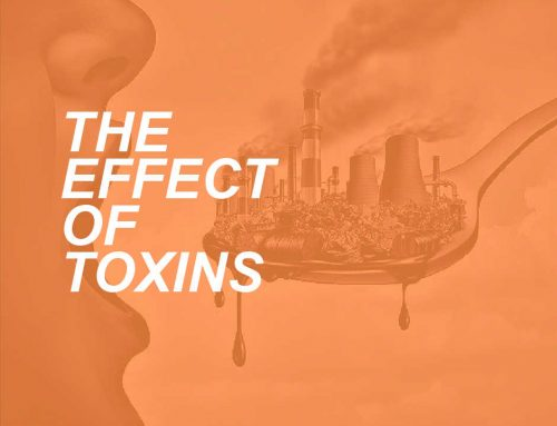 How Toxins Can Cause Cellular Damage
