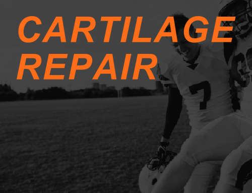 Can Cartilage Be Regenerated?