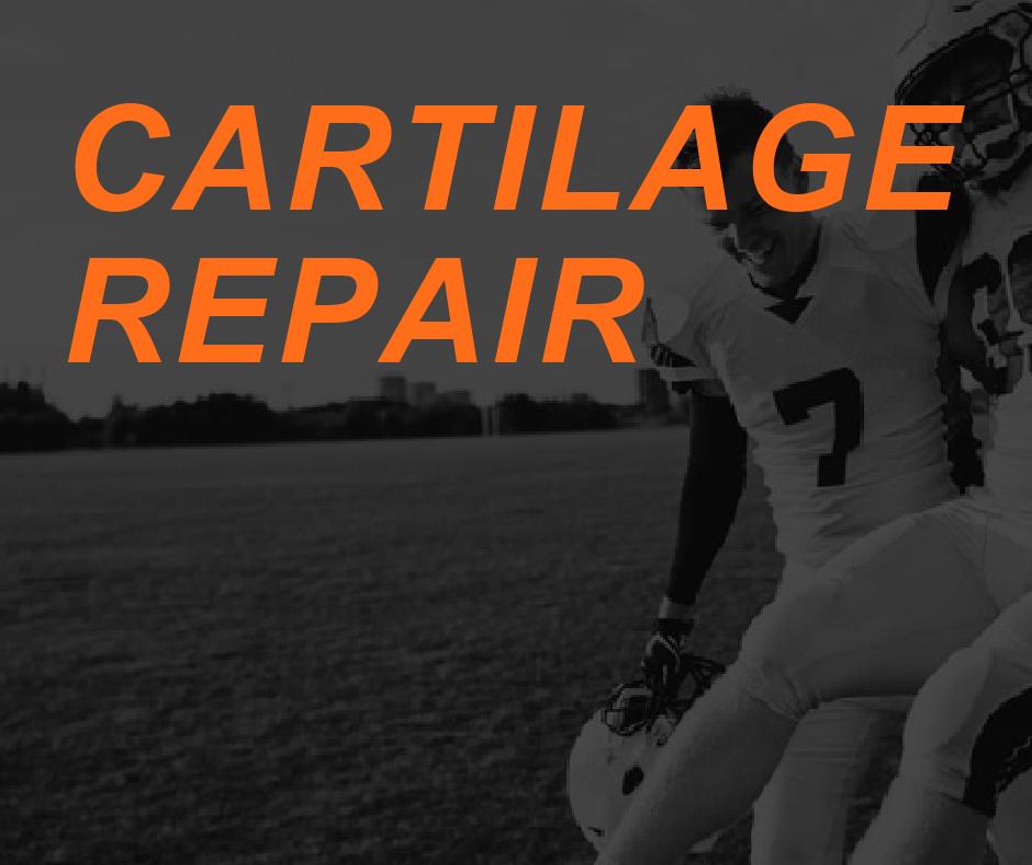 Cartilage Repair