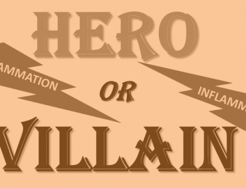 Inflammation: Hero or Villain?  (Or Both?)