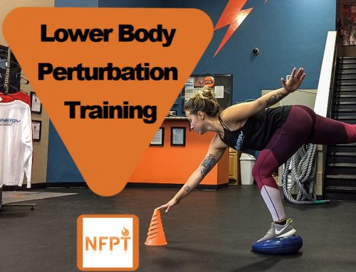 Lower Body Perturbation Training: Finding Your Balance