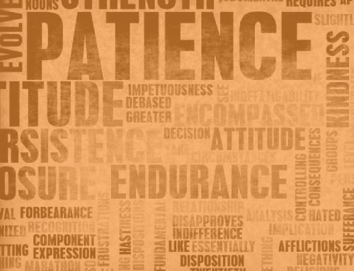 Patience: Sometimes We Just Need It Spelled Out for Us!