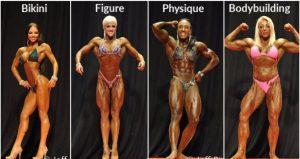 bodybuiilding divisions