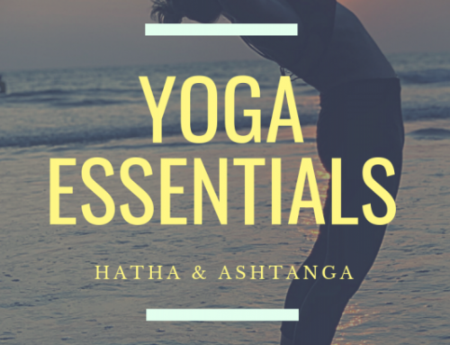 Yoga Essentials for Fitness Professionals